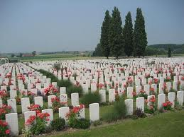 each grave planted with a single rose
